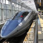 ペットのうさぎを新幹線の乗せる方法とは!?