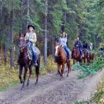 馬に乗る!?乗馬の仕方とは?