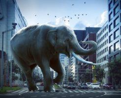 象 マンモス 違い 大きさ 祖先