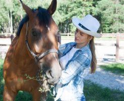 馬 体温 測り方