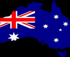 ウォンバット オーストラリア 野生