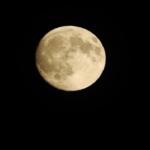 うさぎが月で餅つきをしていると言われるのはなぜ!?