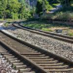 鹿が線路に侵入する理由!なぜ電車を避けないの!?